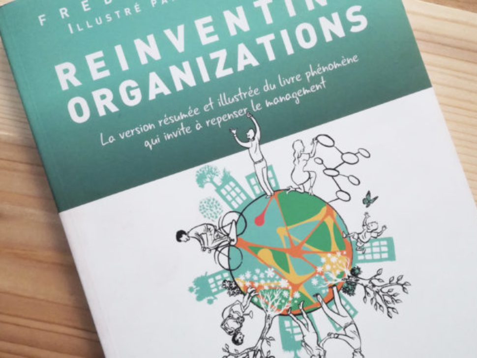 reinventing-organizations-la-version-resumee-et-illustree-du-livre-qui-invite-a-repenser-le-management-1-900x444